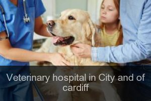 Veterinary hospital in City and of cardiff